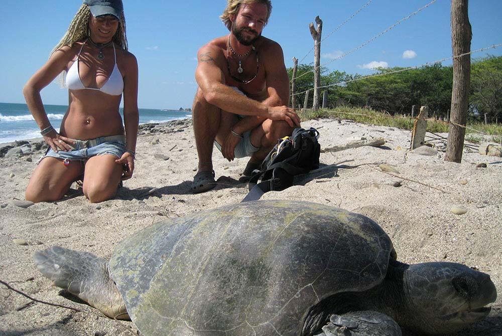Turtle Reserve Tour